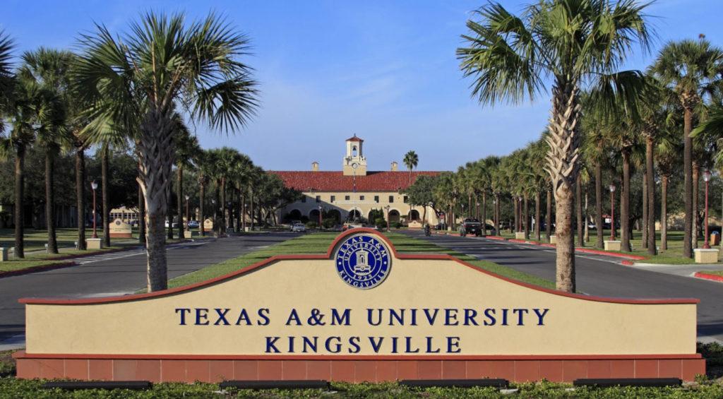 TexasA M Kingsville